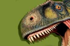 Musée des Dinosaures